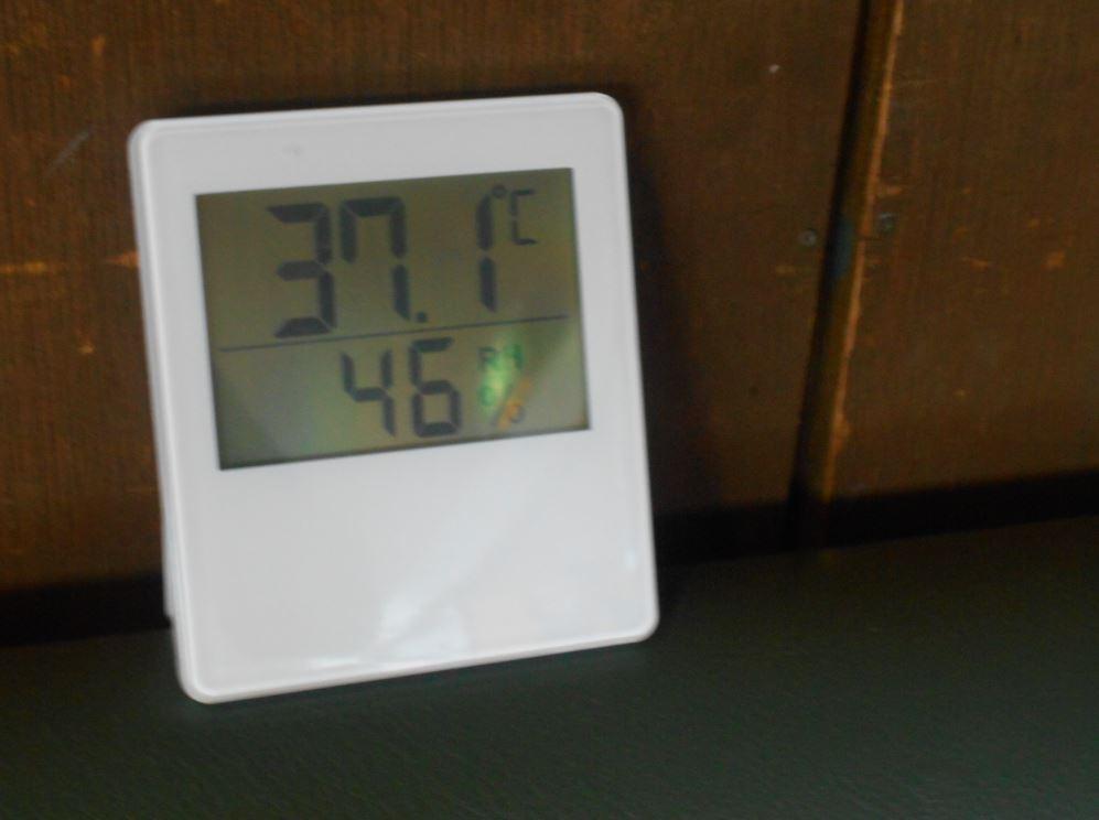 体育館の室温